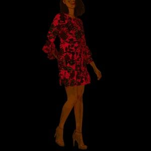 NWT bar III long sleeve floral ruffle hem dress